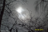 Aufnahme der partiellen Sonnenfinsternis © Sylvia Thiele