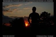 Sonnenuntergang mit Junikäfer