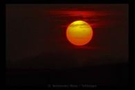 Sonnenflecken im November 2011
