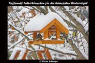 Vogelhäuschen Treffen